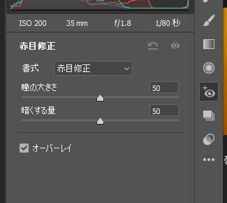 PhotoshopのCameraRaw赤目修正