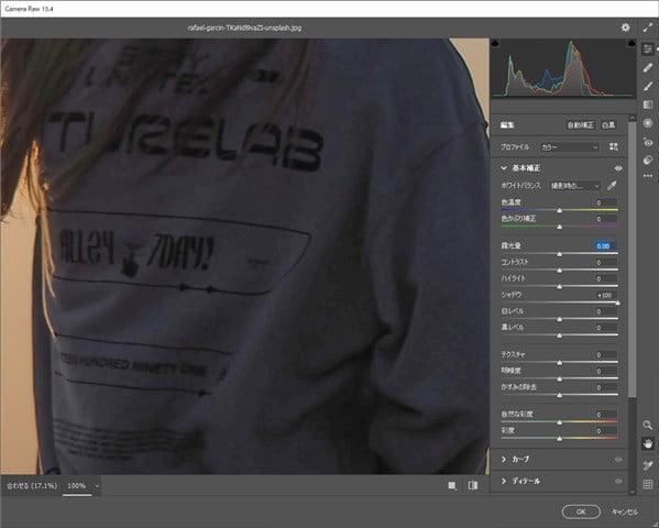 PhotoshopのCamera Raw フィルターの画像のあれ具合